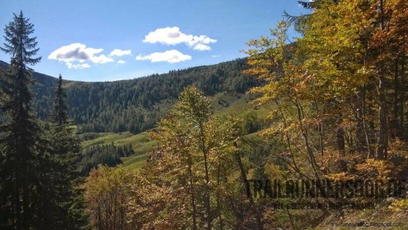 Panorama in das Tal der Roschitzalm